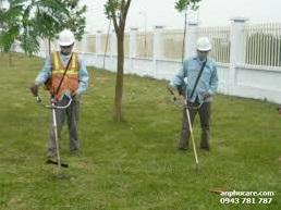 dịch vụ cắt cỏ chăm sóc cây xanh Hưng Yên