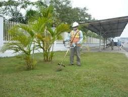 dịch vụ căt cỏ Hưng Yên
